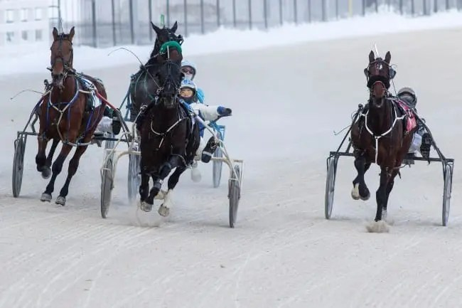 Winter racing at Western Fair often has its share of weather-related challenges, but a sudden thaw brought on by rain and unseasonably warm temperatures is unheard of for January. | Dave Landry