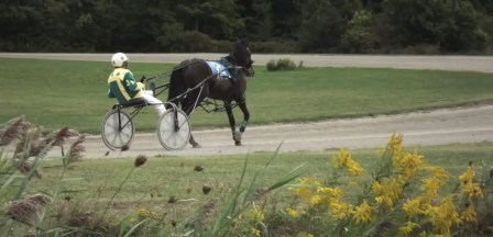 Garnet Barnsdale | Oshweken is the only place in Ontario where fair racing is still conducted.
