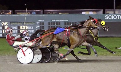 """Brad Conrad 
