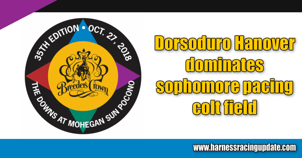 Dorsoduro Hanover dominates sophomore pacing colt field