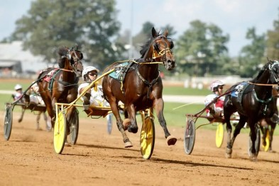 Dave Landry Homicide Hunter (Brian Sears) setting the fastest trotting mile in the history of the sport, a 1:48.4 effort in the $145,000 Allerage Trot on Saturday afternoon at Red Mile.