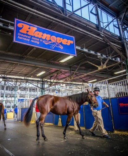 Triscari Video Web and Marketing | Hanover Shoe Farms was, far and away, the leading consignor by gross with over $7 million in sales.