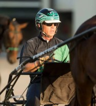 Dave Landry | Takter said about three years ago he started to burn out on training horses.