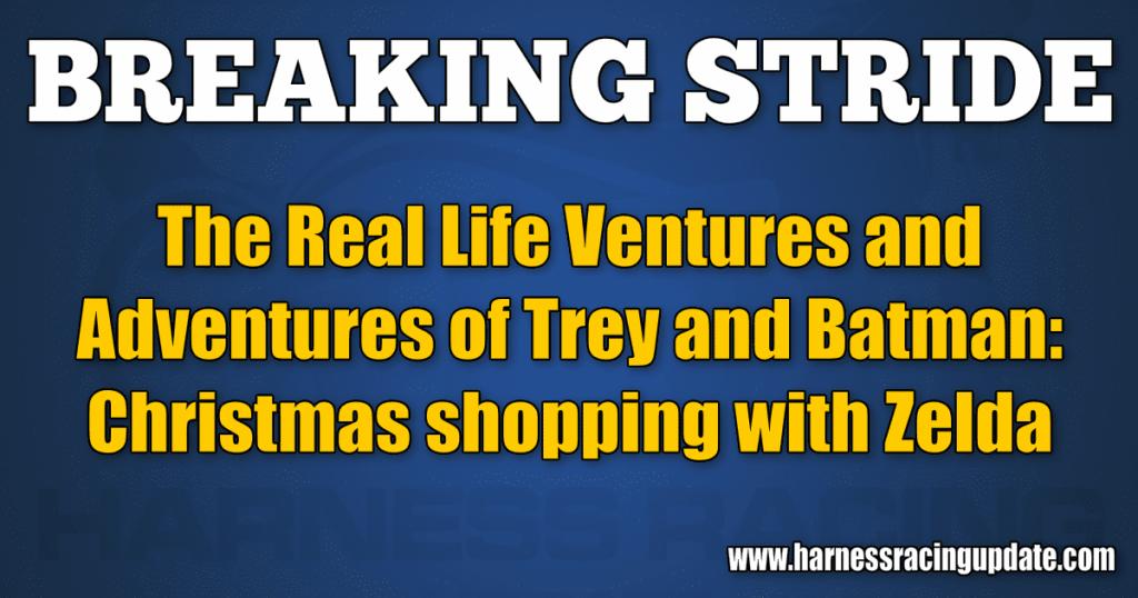 Christmas shopping with Zelda