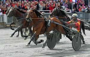 Gerard Forni | Readly Express won the first Elitlopp heat and then was forced to scratch out of the final due to injury.