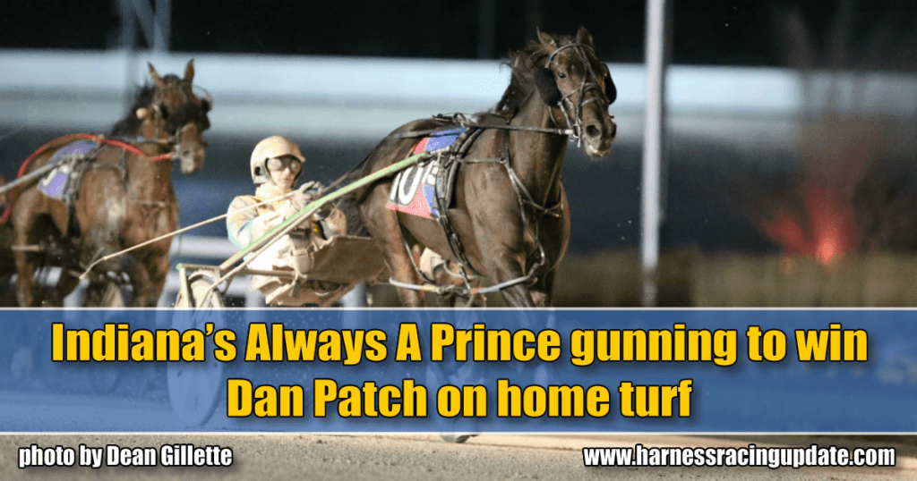 Indiana's Always A Prince gunning to win Dan Patch on home turf