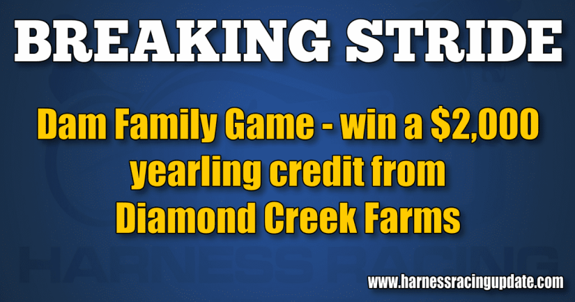 Dam Family Game — win a $2,000 yearling credit from Diamond Creek Farms