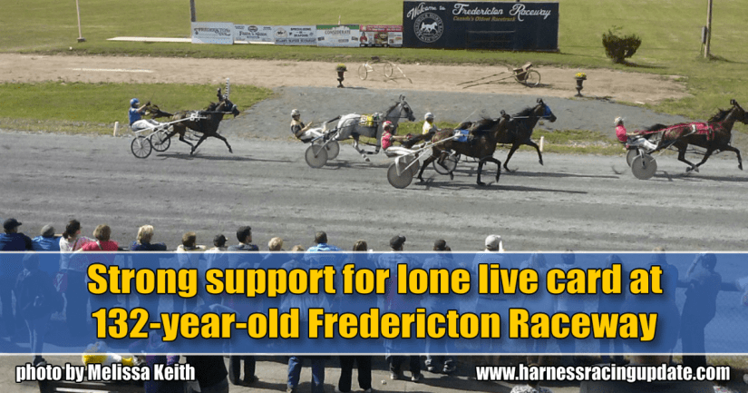 Strong support for lone live card at 132-year-old Fredericton Raceway
