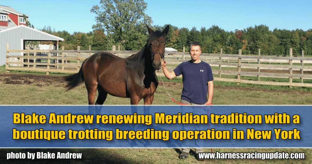 Blake Andrew renewing Meridian tradition with a boutique trotting breeding operation in New York