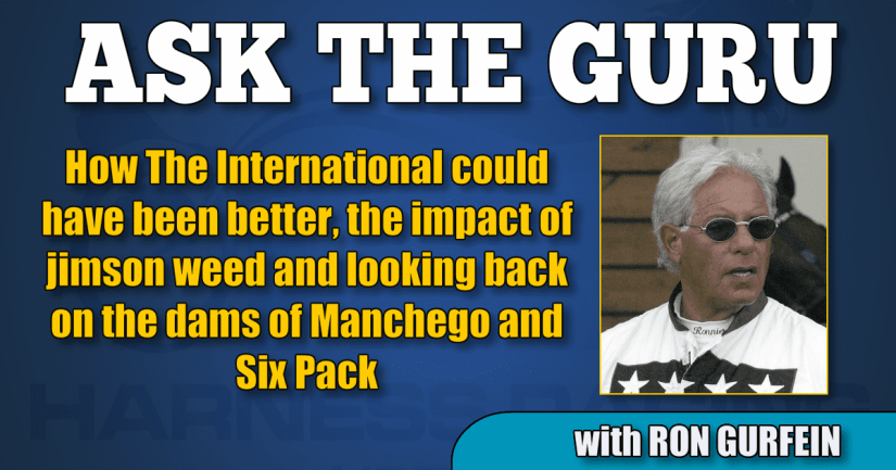 How The International could have been better, the impact of jimson weed and looking back on the dams of Manchego and Six Pack