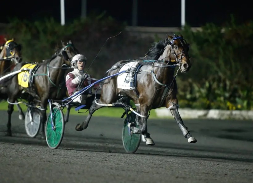 Dave Landry   American History (Bongiorno) stopped the clock in 1:48.3.