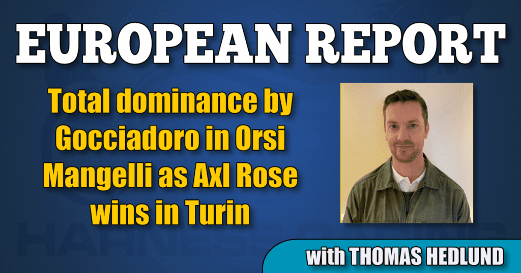 Total dominance by Gocciadoro in Orsi Mangelli as Axl Rose wins in Turin