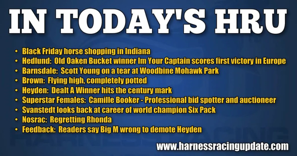 Black Friday horse shopping in Indiana