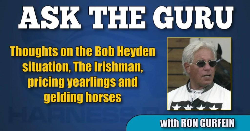 Thoughts on the Bob Heyden situation, The Irishman, pricing yearlings and gelding horses
