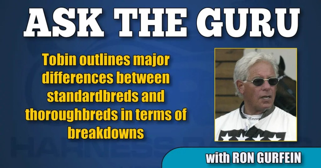 Tobin outlines major differences between standardbreds and thoroughbreds in terms of breakdowns