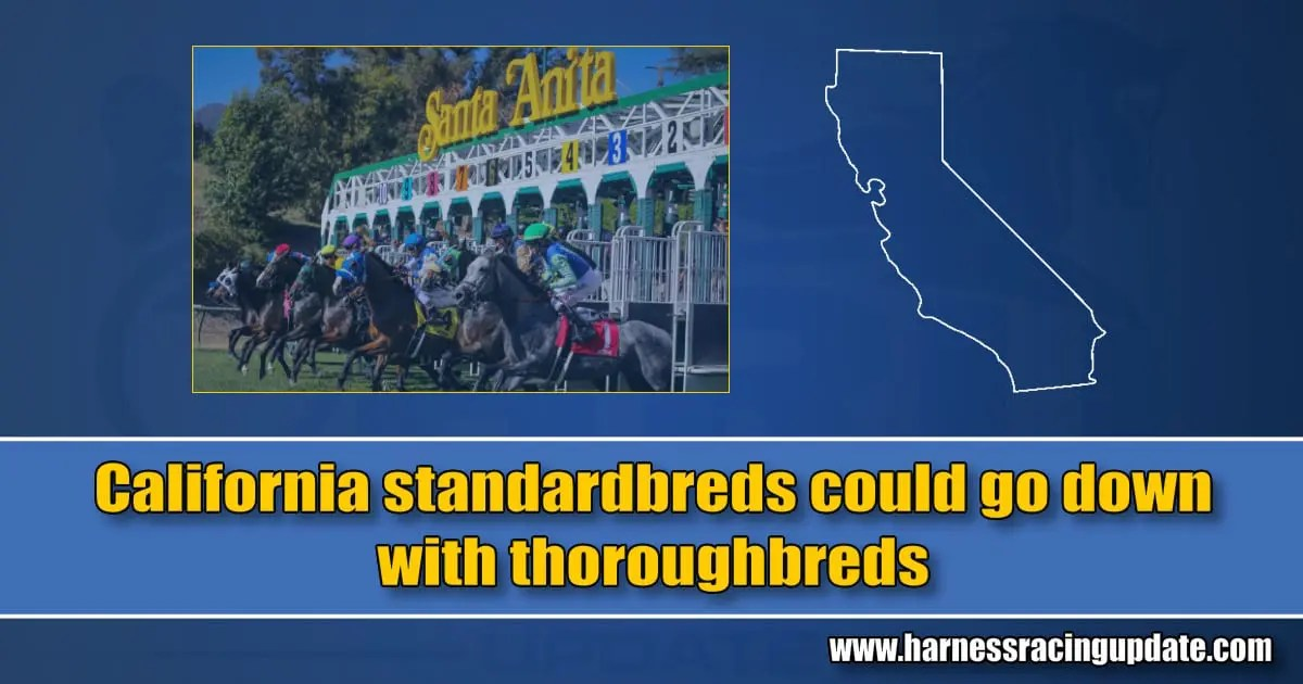 California standardbreds could go down with thoroughbreds