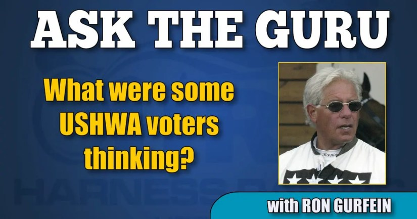 What were some USHWA voters thinking?