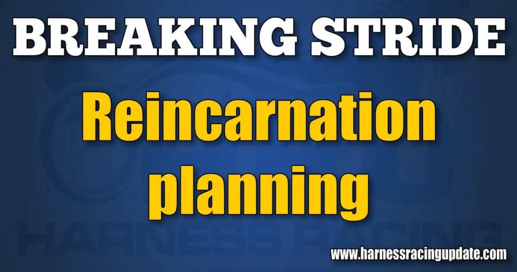 Reincarnation planning