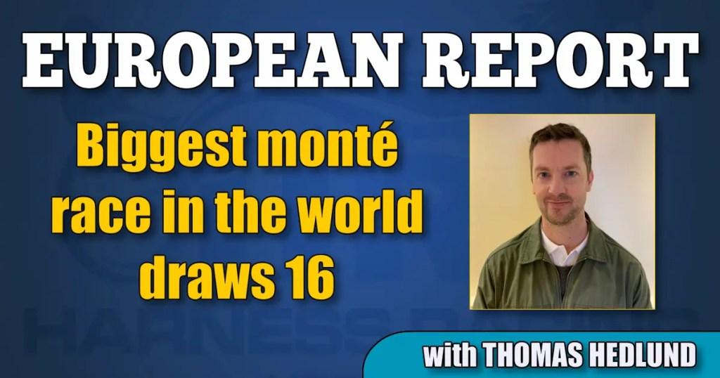 Biggest monté race in the world draws 16