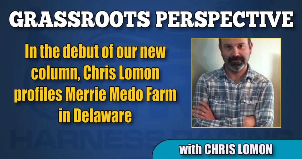 In the debut of our new column, Chris Lomon profiles Merrie Medo Farm in Delaware