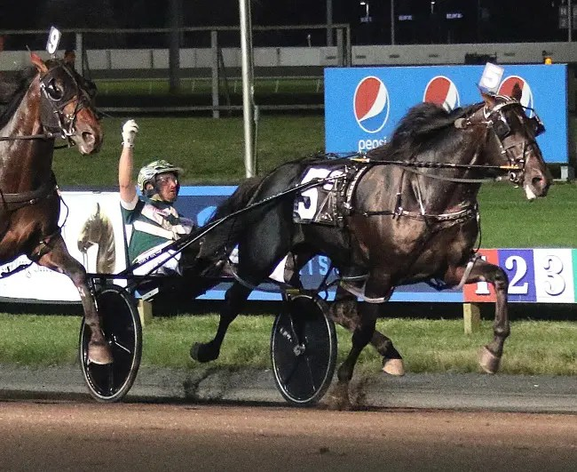 Lisa Photo | Yannick Gingras raises his arm in victory after Tall Dark Stranger came back on to win the Meadowlands Pace after being passed in deep stretch by rival Papi Rob Hanover who finished a neck back in second.