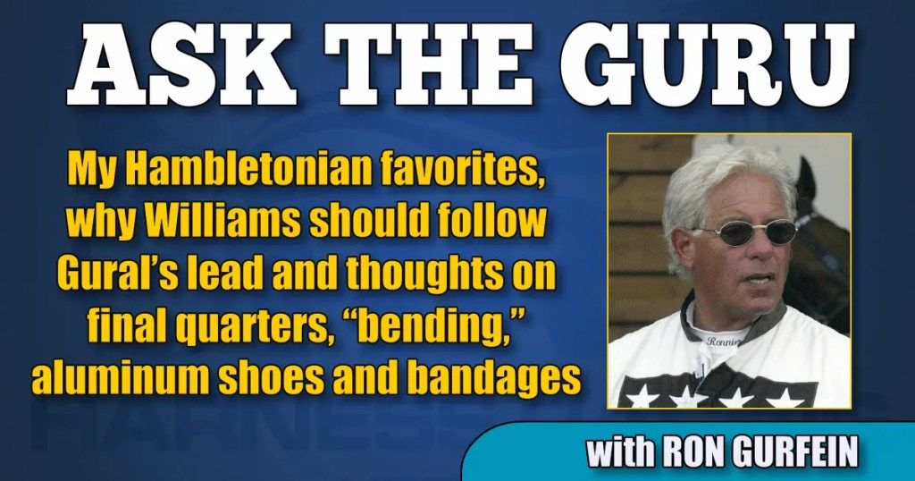 "My Hambletonian favorites, why Williams should follow Gural's lead and thoughts on final quarters, ""bending,"" aluminum shoes and bandages"