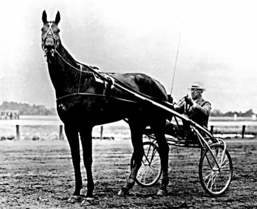 Courtesy Hambletonian Society   In 1932, in the midst of the Great Depression, The Marchioness (above) won the Hambletonian and the author's grandfather formulated a plan to build a garage on his extra plot of land.