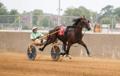 Dean Gillette | Undefeated freshman pacer Big Gulp (Jay Cross) turned in the top performance of the day to capture his $20,000 Governor's Cup championship in a lifetime best 1:52.4.