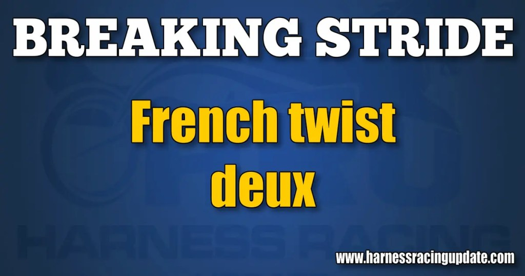 French twist deux