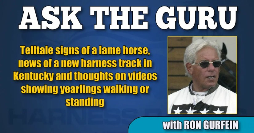 Telltale signs of a lame horse, news of a new harness track in Kentucky and thoughts on videos showing yearlings walking or standing