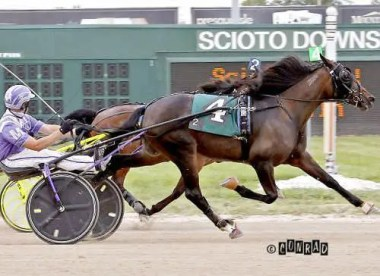 Brad Conrad | Morgan's Herculisa (Miller) is the 8-5 morning line choice in the 2-year-old filly trot final.