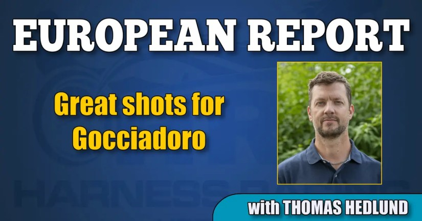 Great shots for Gocciadoro