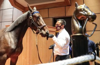 Mark Hall / USTA | Kadena, a Walner filly out of Mission Brief, was the sale topper. She sold for $725,000 to trainer Marcus Melander on opening night out of the Hunterton consignment.