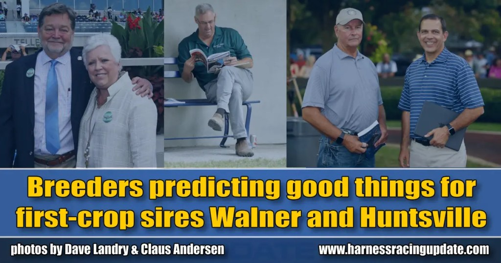 Breeders predicting good things for first-crop sires Walner and Huntsville