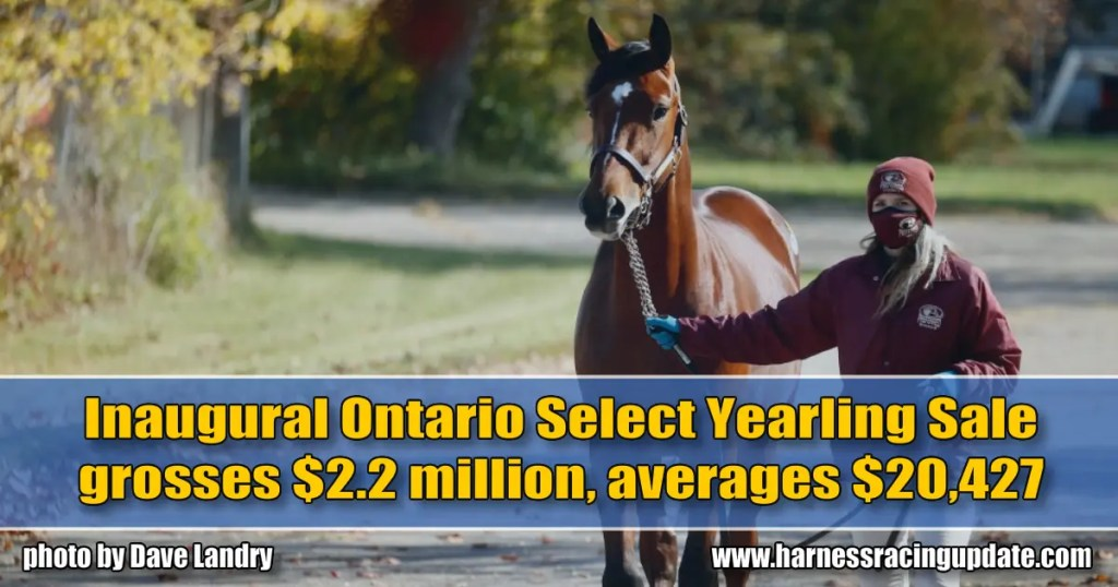 Inaugural Ontario Select Yearling Sale grosses $2.2 million, averages $20,427