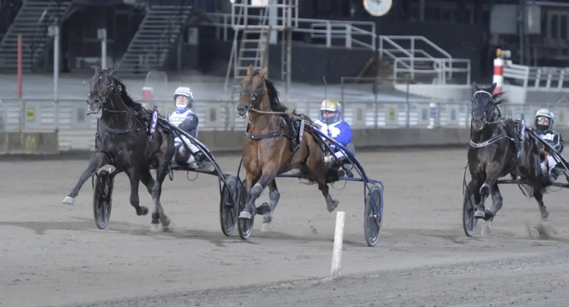 Leif Norberg / ALN | Aetos Kronos (9) defeated Ecurie D. (10) in the $70,500 Solvalla Grand Prix for 4-year-olds was held at Solvalla racetrack on Friday night (Nov. 27).