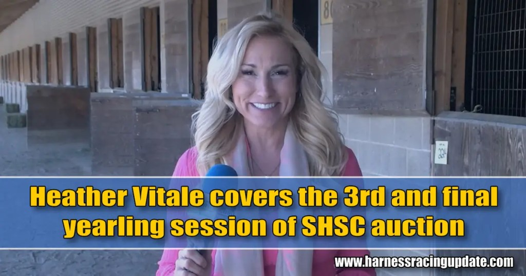Heather Vitale covers the 3rd and final yearling session of SHSC auction
