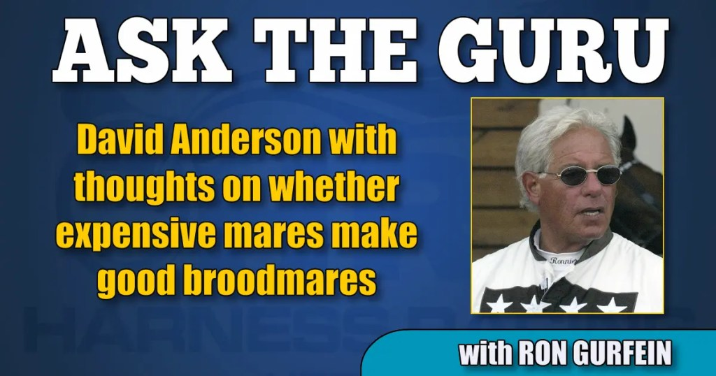 David Anderson with thoughts on whether expensive mares make good broodmares