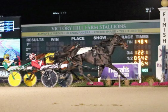 Dean Gillette | Kissin In The Sand (Dexter Dunn) won the Breeders Crown and fulfilled a promise Takter made to part-owner Marvin Katz.