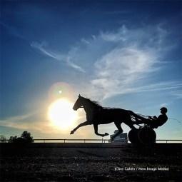 2020-Outstanding-Photo-Finalist-Clive-Cohen-640px copy
