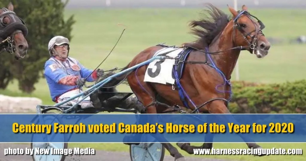 Century Farroh voted Canada's Horse of the Year for 2020