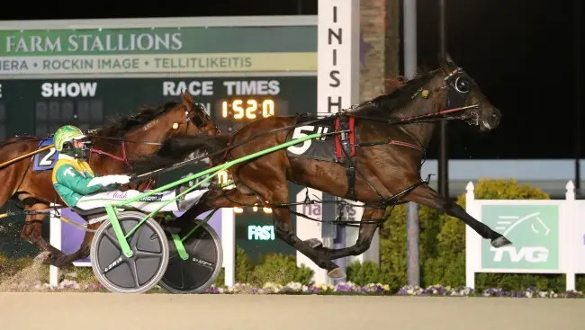 Dean Gillette   Certifiable (Trace Tetrick) is perfect in Hoosier Park's Jerry Landess Series.