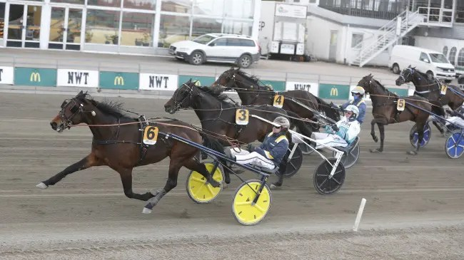 Lennart Kihlman/ALN | Click Bait (Per Lennartsson), bred by Russell Williams, recorded the fastest mile rate on a 5/8ths mile track in Europe in 2021 when he won a stakes race on Friday (April 2) at Färjestad racetrack in 1:52.2.