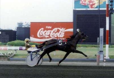 Equi-Photos | Lella Montgomery driving Charisma Seelster to a 1:55.3 victory at the Meadowlands in 1995 that was the fastest trotting mile by a female driver.
