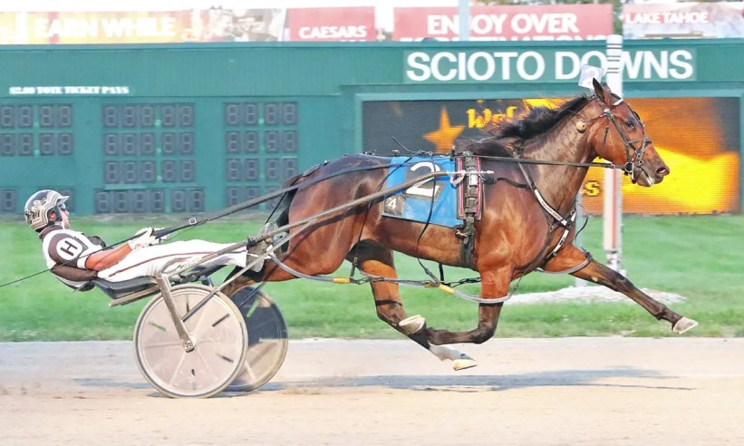 Brad Conrad | Irish import Oakwoodanabella IR (Austin Hanners) setting her career best mark of 1:50.4 on Thursday (Sept. 16) at Scioto Downs. She will race Wednesday (Sept. 22) in the Jugette at the Delaware County Fairgrounds.