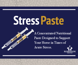 Poseidon Equine Stress Paste