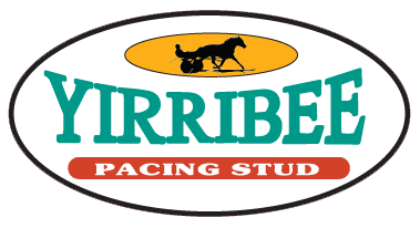 harness-racing-stud-nsw-yirribee-logo-trans-bg