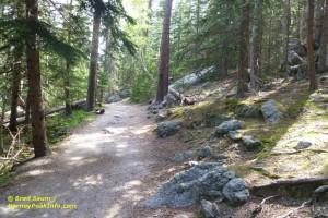 Harney Peak hiking trail.