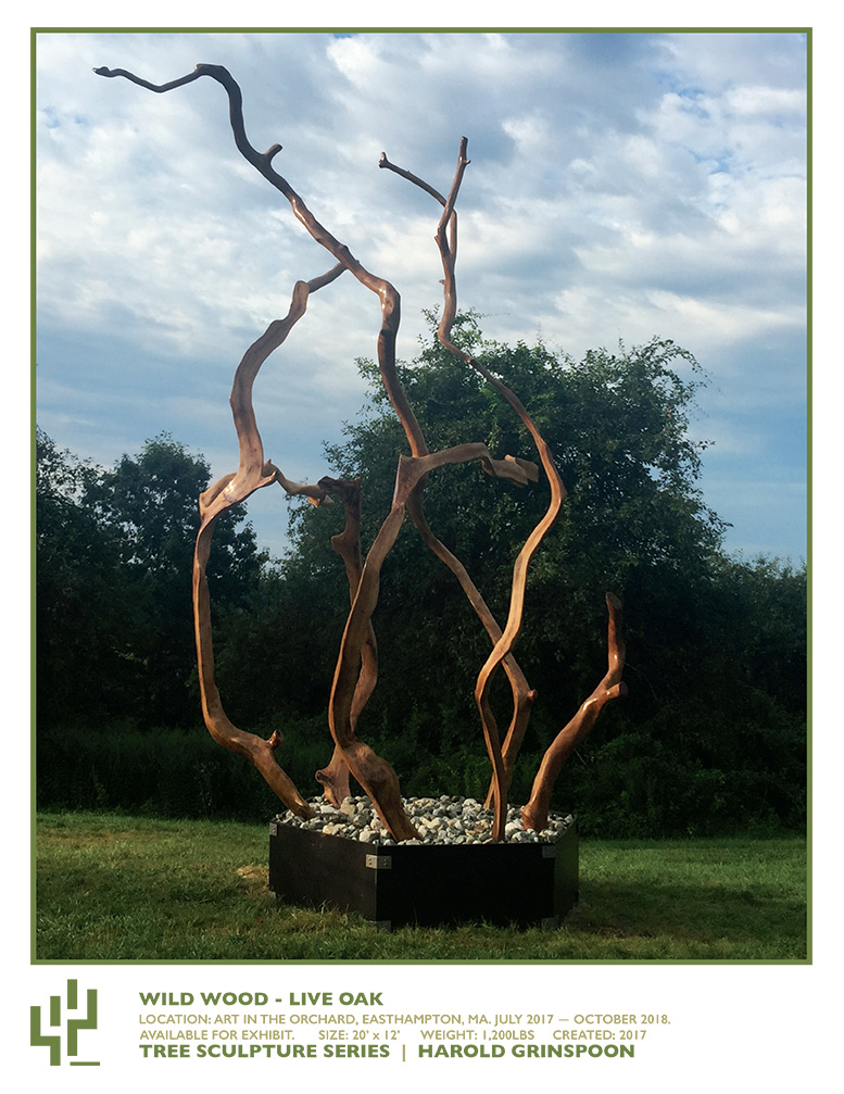 Wild-Wood-at-ArtintheOrchard-Live-Oak