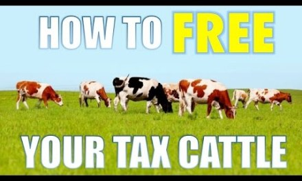 How To Free Your Tax Cattle
